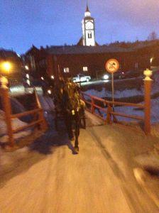 Med hest og vogn gjennom Rørås